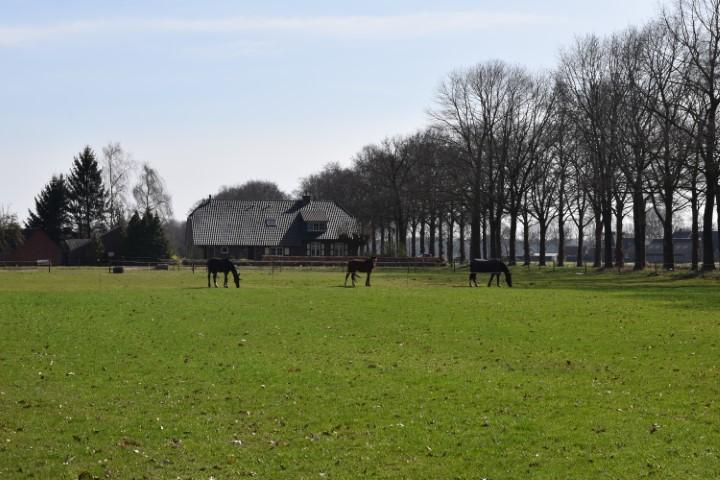 v.d. Barg - Aaltenseweg