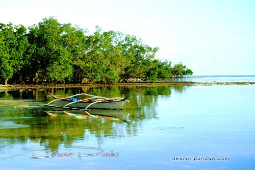 Mahaba Island Mangrove Forest 520px
