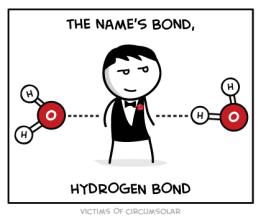 Enlaces por ponte de Hidróxeno