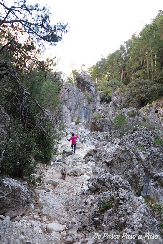 Niña y perra transitando por sendero rocoso