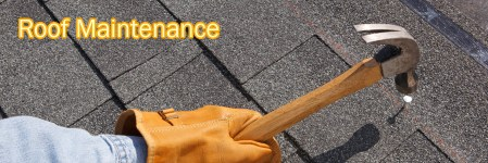 Roof-Maintenance1