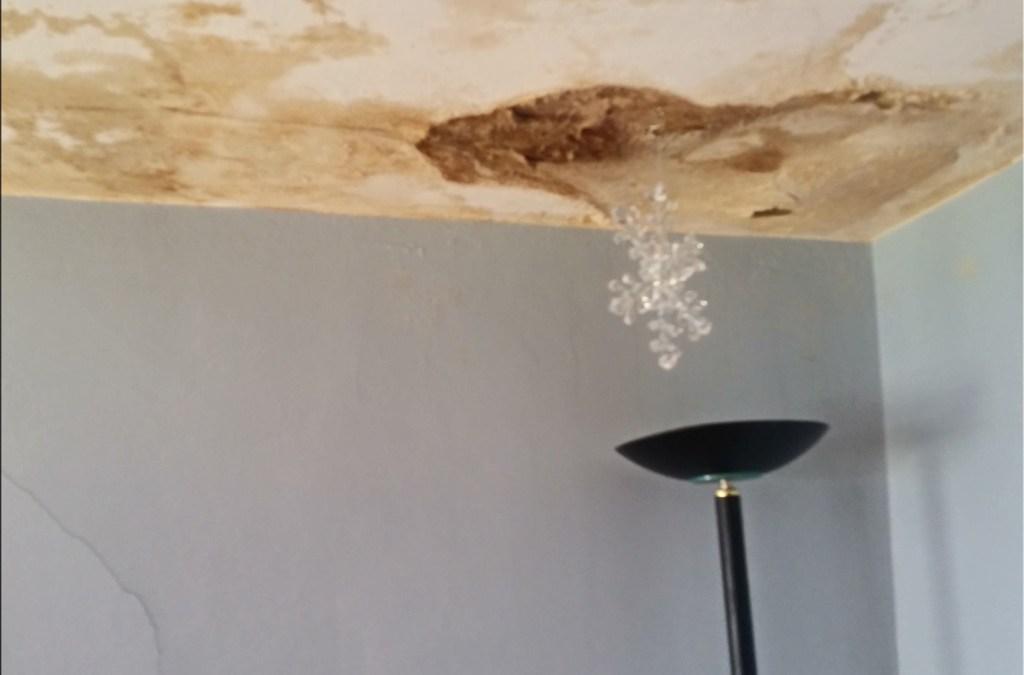 Bedroom Plaster Damage