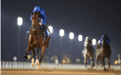 Racehorse Meds have the best Vitamins and Supplements