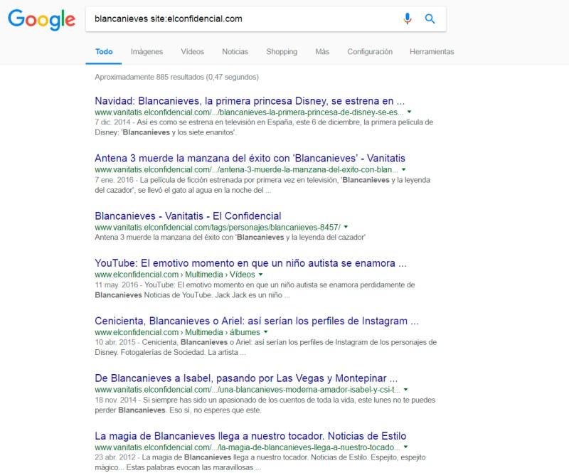 ejemplo de búsqueda dentro de un sitio web