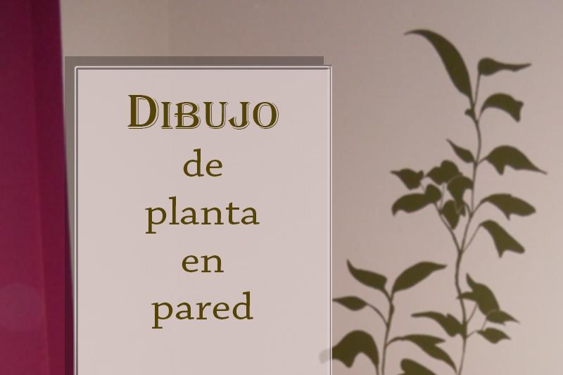 cabecera dibujo planta en pared