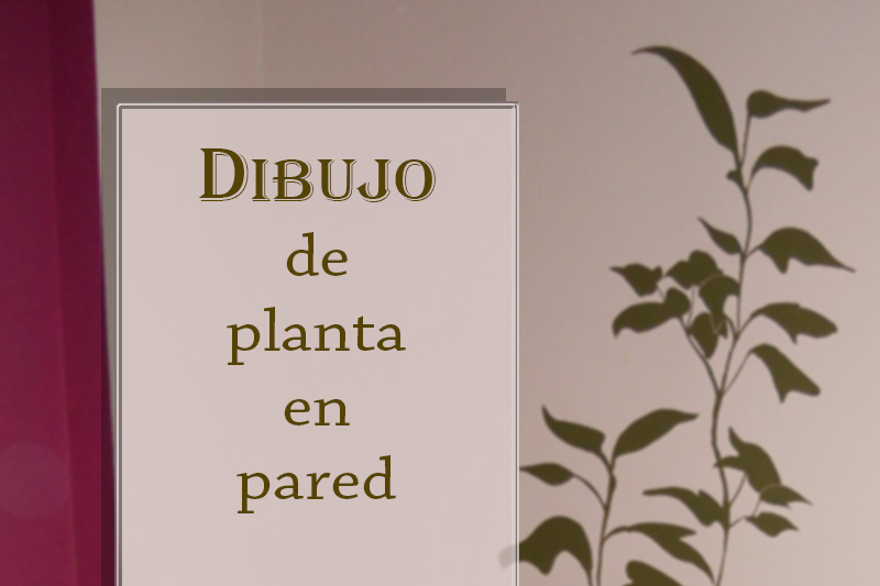 decoracin de paredes planta para saln