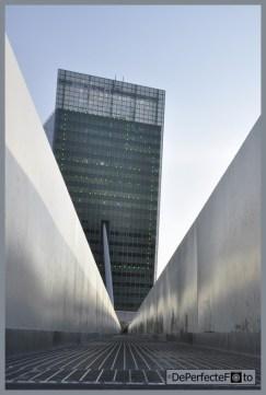 © De Perfecte Foto - Rotterdam (34) (Kopie)