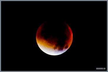 bloedmaan_27_09_2015__55 (Kopie)