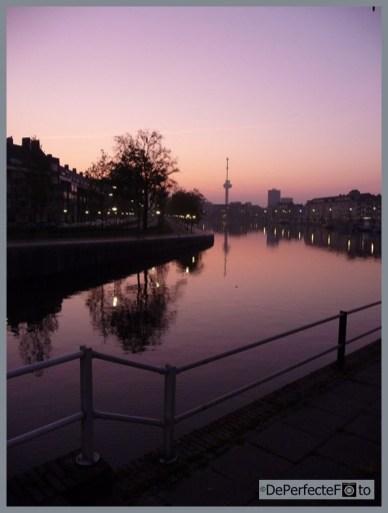 rotterdam_aan_de_maas_cruisschepen_park_0026 (Kopie)