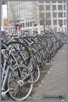 rotterdam_fietsen_marconiplein_0001 (Kopie)