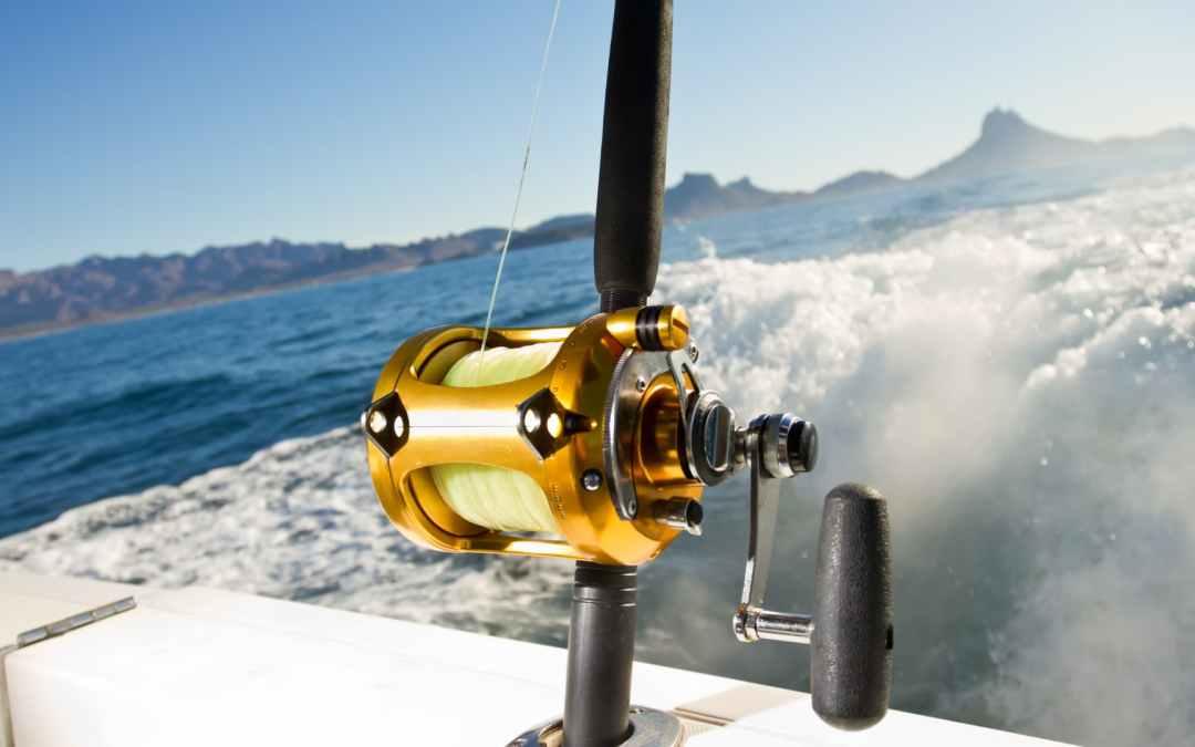 Guía explicativa: Conoce el Gear Ratio del carrete de Pesca
