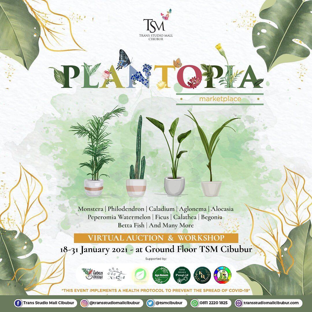 Plantopia di Trans Studio Mall Cibubur Depok Januari 2021