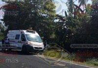 Abejas atacan a 4 personas en Cerro de Ortega; hay tres graves y un hombre fallecido