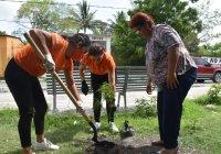 DIF Municipal Colima impulsa acciones de reforestación en Los Ortices