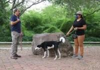 """Realizan tercera jornada del Foro Canino """"Un Espacio con mi Can"""""""