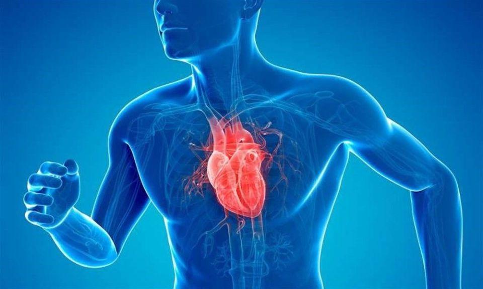Ejercicios para la salud cardiovascular