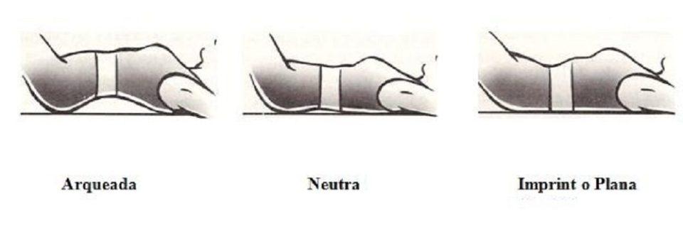 Curvatura de la pelvis