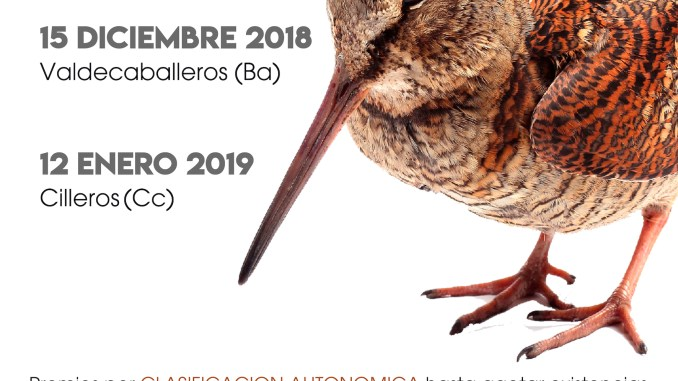 El Campeonato de Extremadura de Becadas se celebra con una doble prueba puntuable en Valdecaballeros y Cilleros