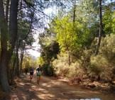 Las montañas de GUADALUPE viven una gran jornada (8)