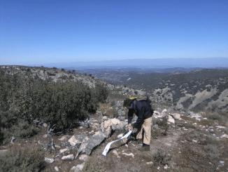 VII edición de la Media Maratón Por Montaña Subida al Camorro