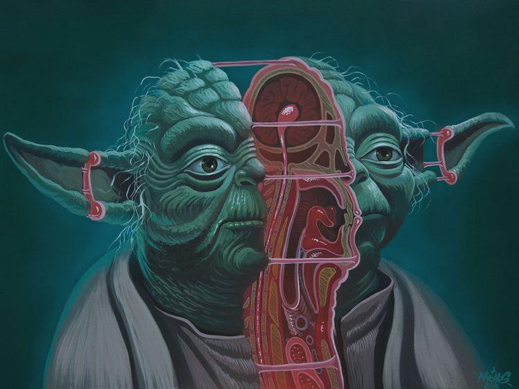 anatomia-deposito-nerd (3)