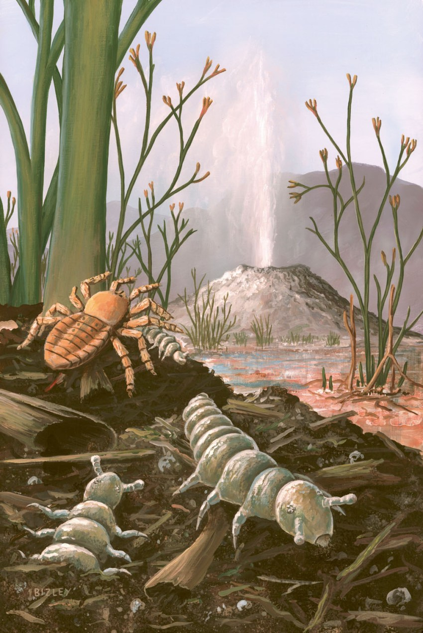 B) Devonian
