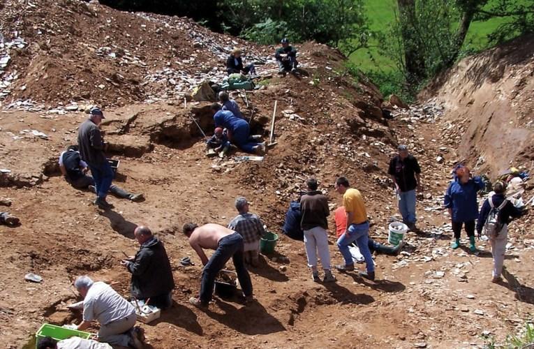 Palaeocene lagerstätte in France