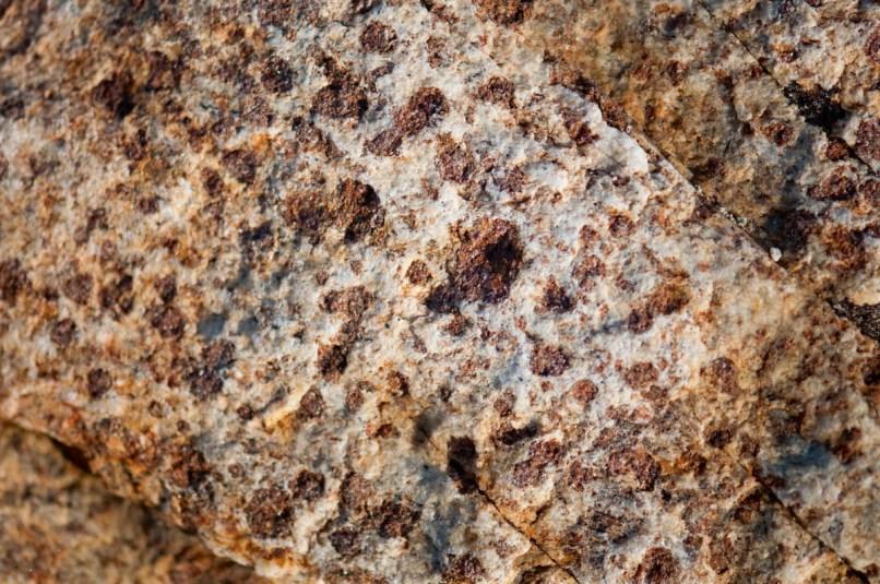 Fig 2. 3byr-old basement gneiss, rich in garnets.