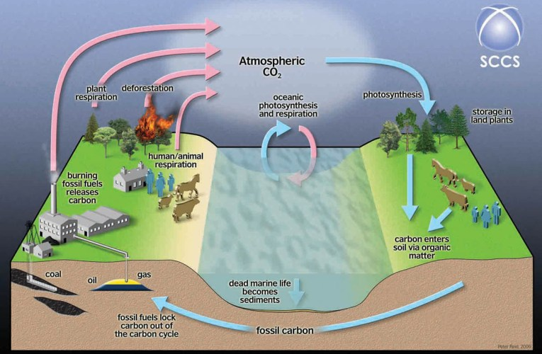 Carbon Capture and Storage (CCS): Using geology to fight climate change