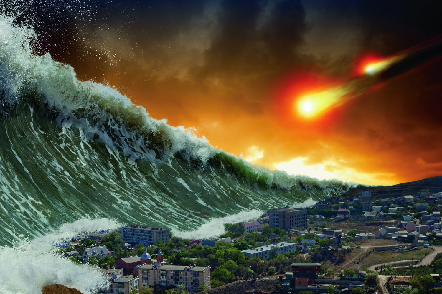 Caught between two mass extinctions – the rise and fall of Dicroidium