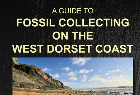 Book review: A Guide to Fossil Collecting on the West Dorset Coast, by Steve Snowball and Craig Chivers