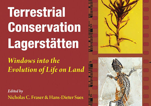 Book review: Terrestrial Conservation Lagerstätten, by Nicholas C Fraser and Hans-Dieter Sues