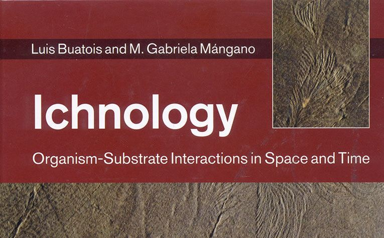 Book review: Ichnology: Organism -Substrate Interactions in Space and Time, by Luis Buatois and M Gabriela Mángano