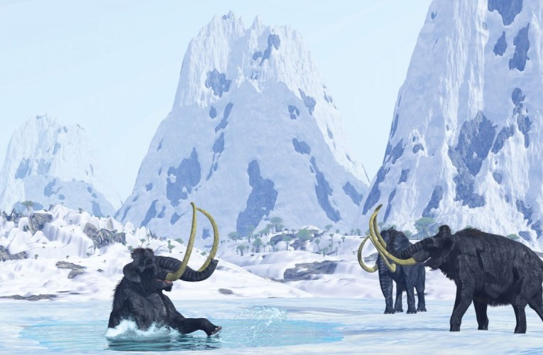 Mammoths in the freezer