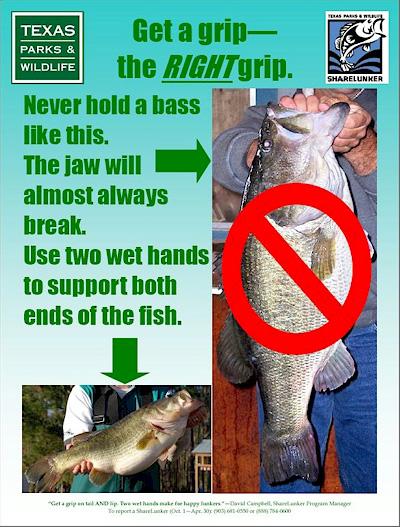 tpwd-big-bass-grip