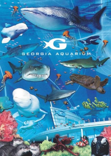 Ariel went to the Georgia Aquarium.