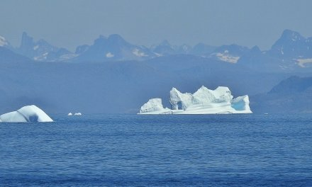 Navegando entre icebergs
