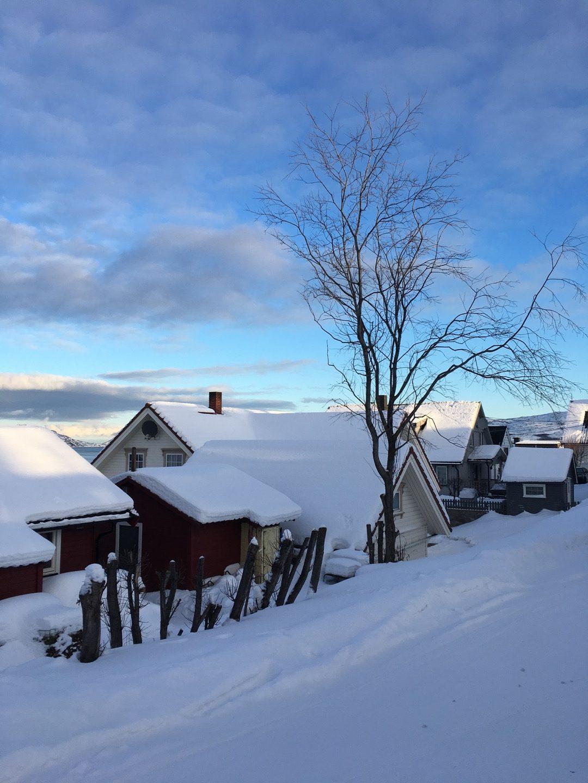Invierno en Kirkenes