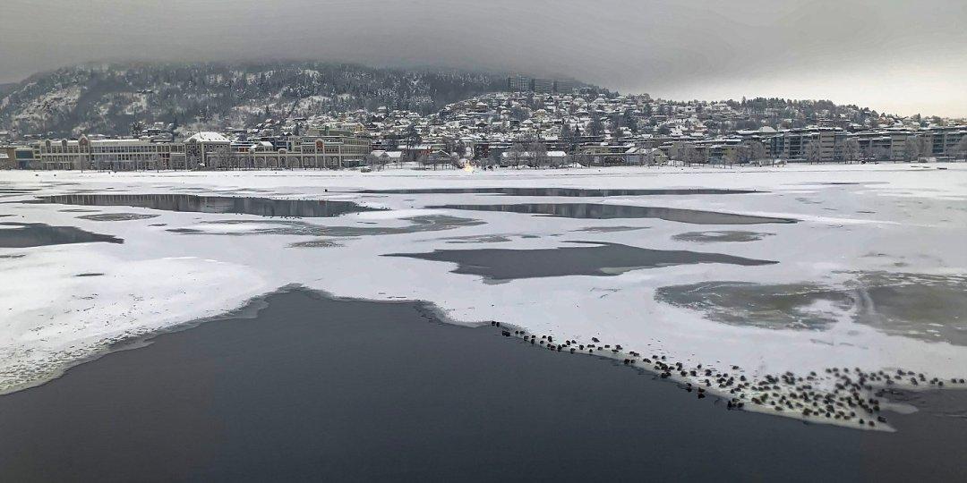 Drammen y el Drammensfjorden