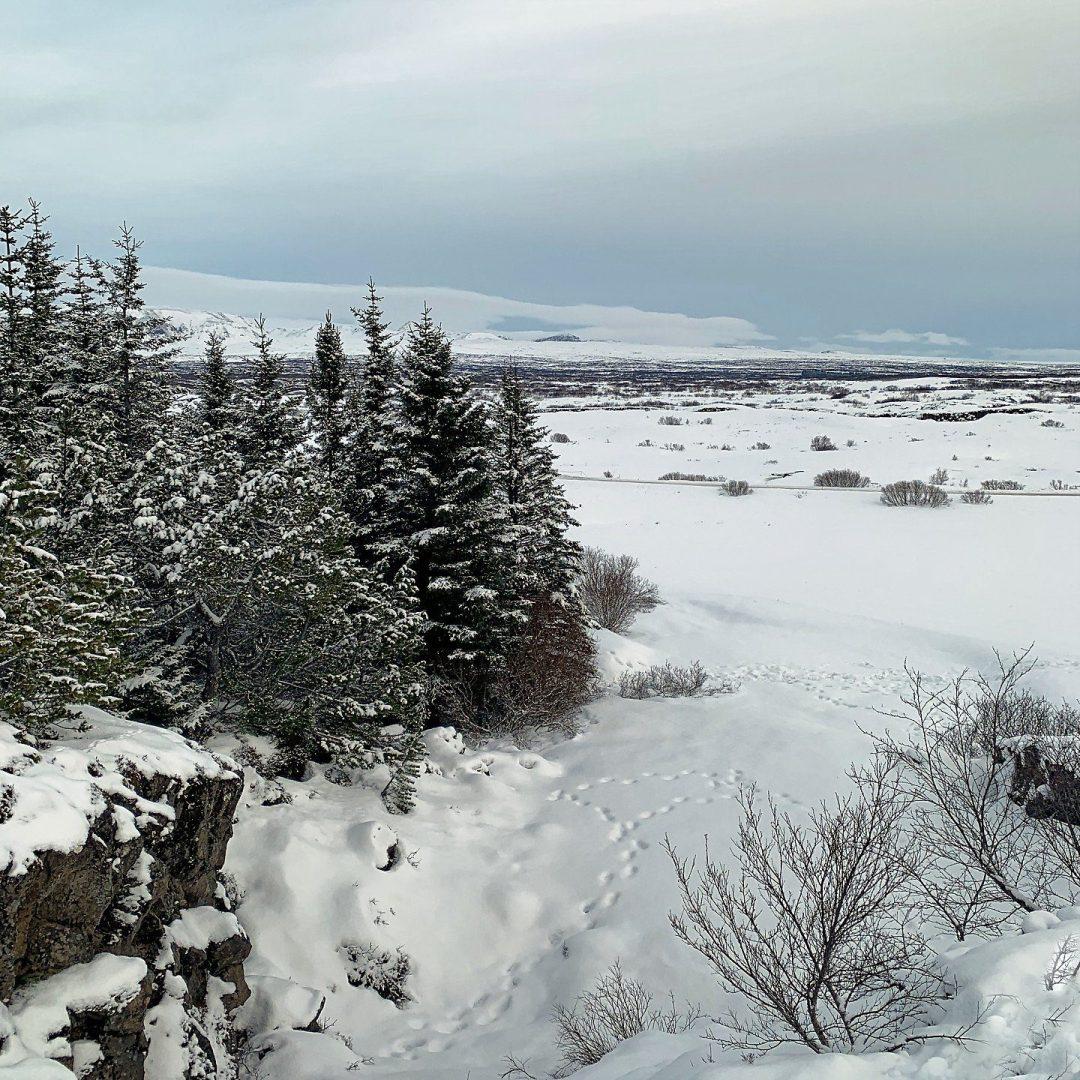 Camino de Öxarárfoss