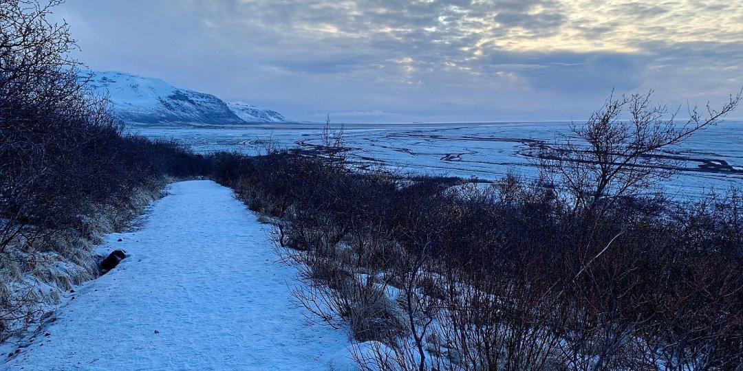 Senda hacia Svartifoss