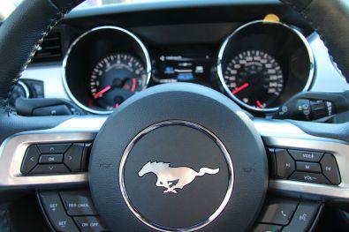 Ford Mustang Convertible 2015 Lenkrad