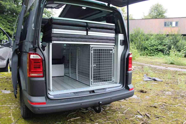Dogscamper: Urlaub mit vier Pfoten