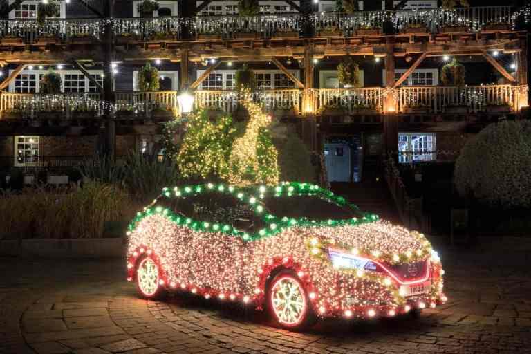 Nissan Lea Tree
