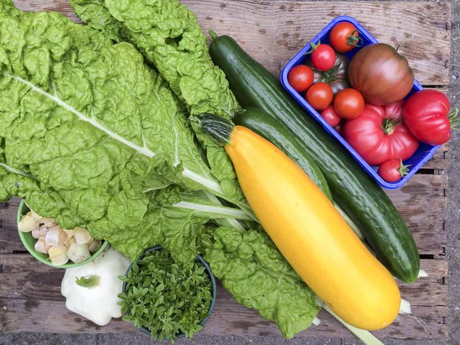 Mangold, Zucchini, Gurken, Patisson, Tomaten, Basilikum und Ananskirschen