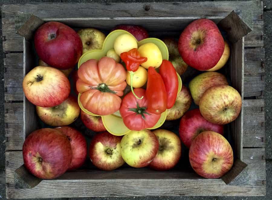 Äpfel und Tomaten