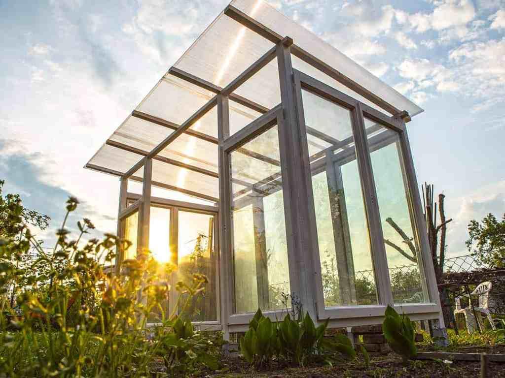 tomatenhaus bauen