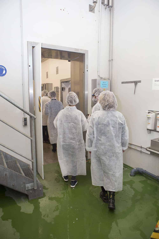 besichtigung tofuproduktion