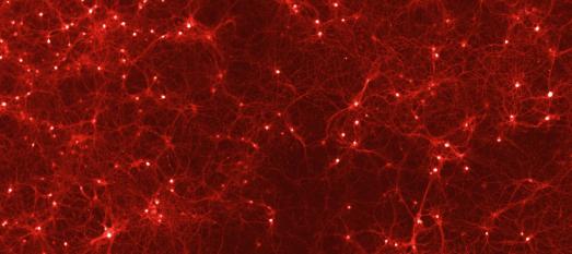 Künstliche Intelligenz und neuronale Netze