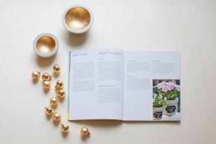 adventskalender-franzy-betonbuch-grundlagen-xmas